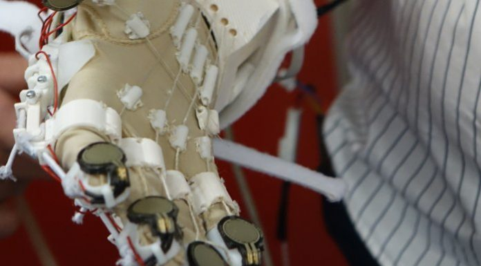 exosquelette main