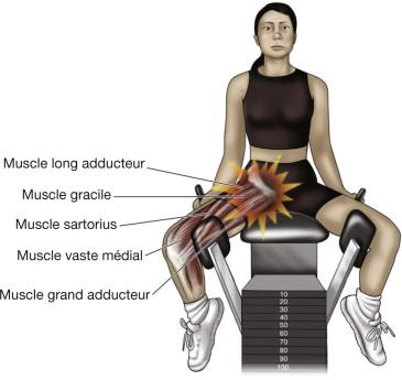 Le patient atteint d'une tendinite des adducteurs présente une douleur à la palpation de la racine des tendons adducteurs. Une adduction contrariée active ainsi qu'une abduction passive déclenchent la douleur.